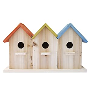 23 Bees 3 Hole Bird House for Outside/Indoors/Hanging, Kits for Children & Adults, Decorative Birdhouse & Home Decoration, Outdoors Feeder for Birds, Bluebirds, Wrens & Chickadees, All Weather