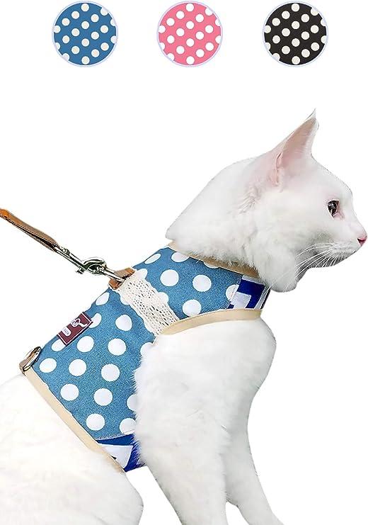 Arnés con correa de Yizhi Miaow para pasear a perros, gatos y hurones: Amazon.es: Productos para mascotas