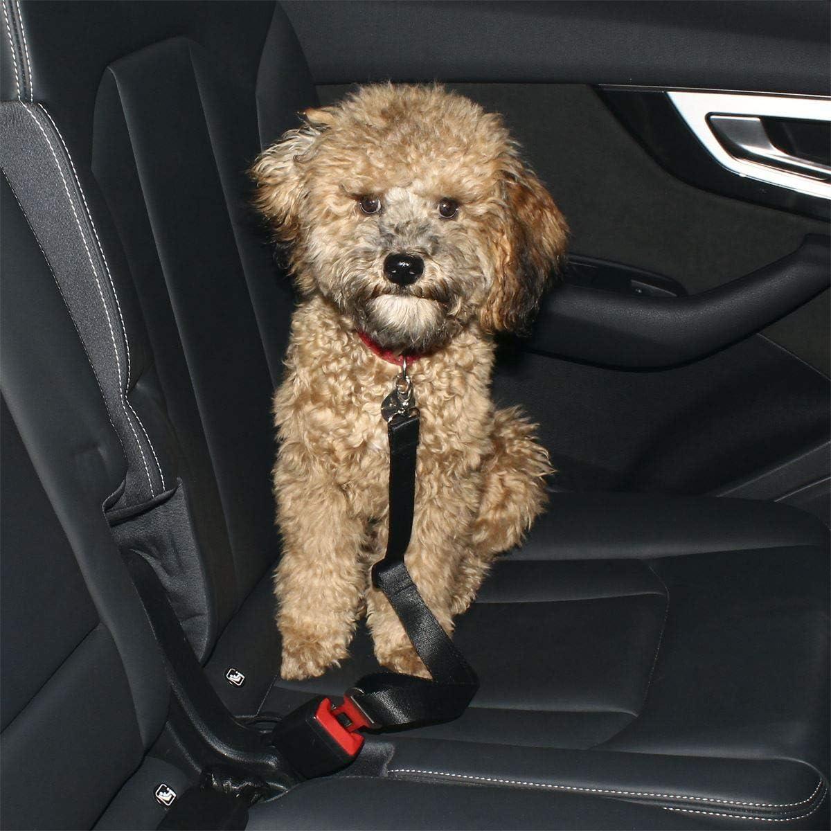 Guinzaglio per Cani Auto Cintura per Cani Auto Cintura di Sicurezza Regolabile Guinzaglio Auto Gatti e Animali Domestici 2 Pezzi Nero igadgitz Xtra U6975-KIT