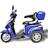 1000 W eScooter Elektromobil 3 Rad eScooter Seniorenfahrzeug Seniorenmobil Elektrostuhl ECO Engel 501