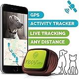 Kippy Vita - Localizzatore GPS per cane e gatto con Activity Tracker - Green Eye
