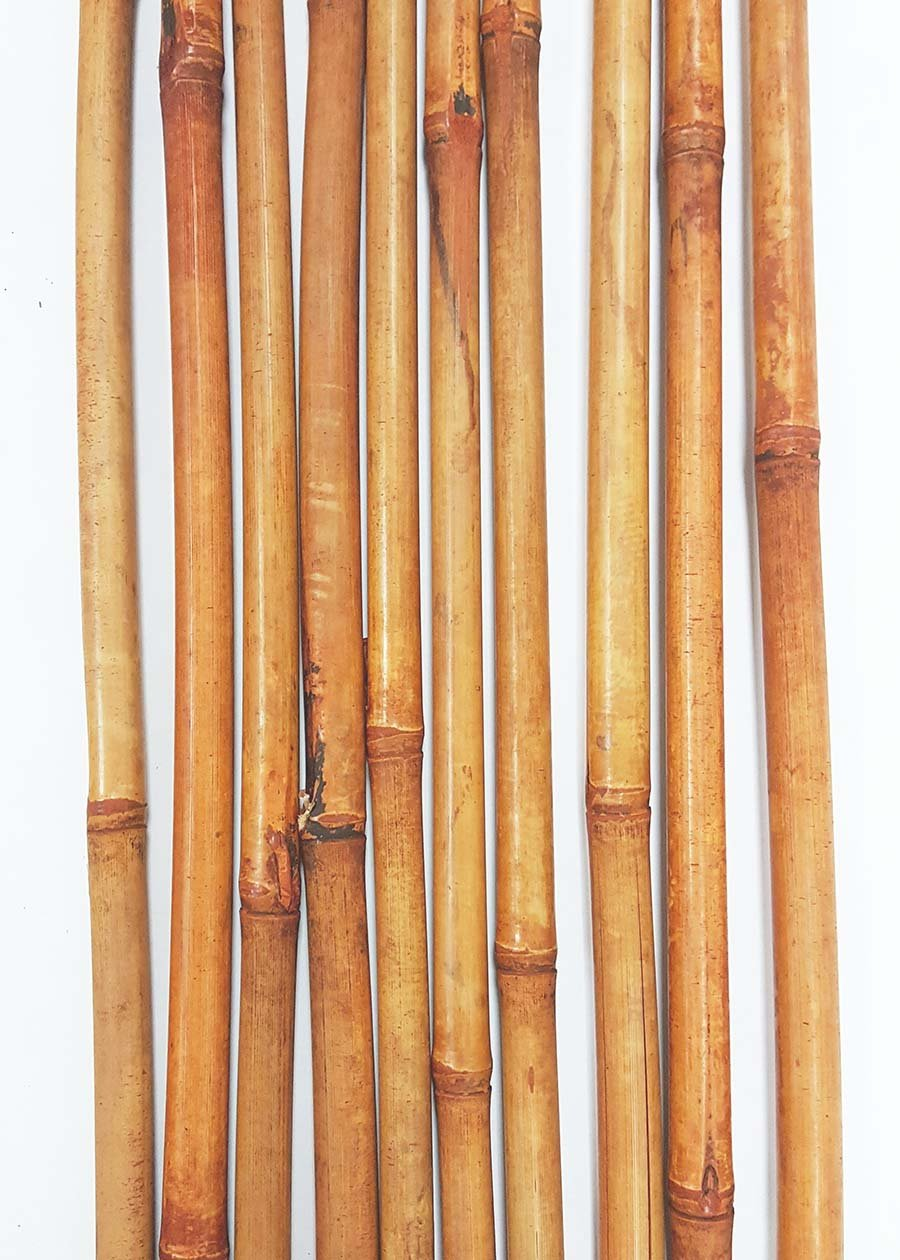 Green Floral Crafts Decorative Bamboo Poles 57 Tall Nearly 5 Ft Light Burnt Orange 10 Bamboo Sticks Botanical Accent