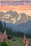 Rocky Mountain National Park, Colorado - Bear Family and Spring Flowers (9x12 Art Print, Wall Decor Travel Poster)