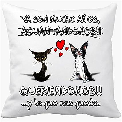 Cojin Con Relleno San Valentin Perros Gatos Animales Frase De Amor