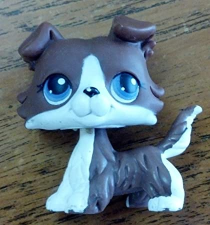 Amazoncom Littlest Pet Shop Collie No Number Brown White With