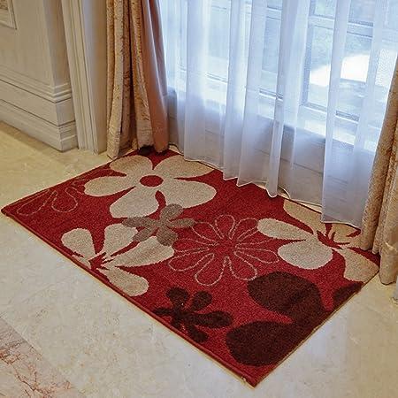 Casa moderna y simple casa felpudos en el pasillo/[felpudo casa escaleras]/ rectangular de salón dormitorio alfombras y puerta de la escalera esteras-D 60x90cm(24x35inch): Amazon.es: Hogar