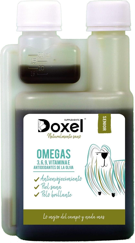 Doxel Senior-500ml Aceite para perros| Suplemento| Antiinflamatorio| Anti envejecimiento| Articulaciones sanas| Sistema inmunitario| Ácidos grasos Omega 3 6 9| Vitamina E| Masa muscular|Perros mayores