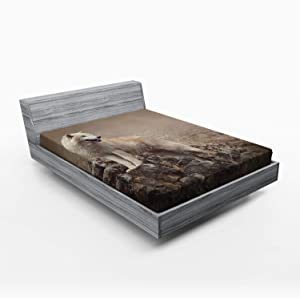 Ambesonne Animal Fitted Sheet, White Wolf on Rocks at The Night Hazy Misty Weather Wildlife Nature Scenery Print, Soft Decorative Fabric Bedding All-Round Elastic Pocket, Queen Size, Brown Beige