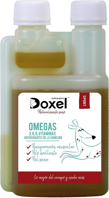 Doxel Sport - 1litro l Aceite para perros | Suplementos naturales nutricionales | Antioxidantes| Recuperación muscular| Articulaciones sanas |Sistema inmunitario reforzado| Canicross| Agility| Mushing