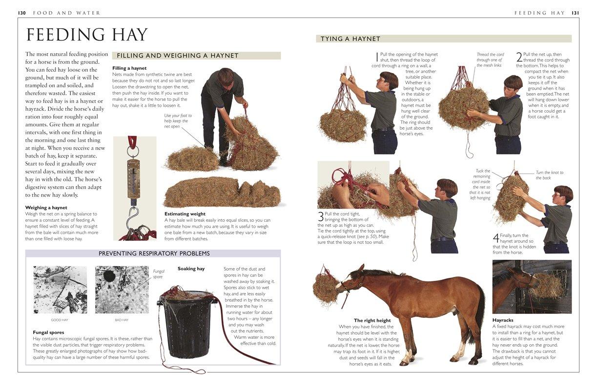 Complete Horse Care Manual: Colin Vogel: 0690472071600: Amazon.com: Books