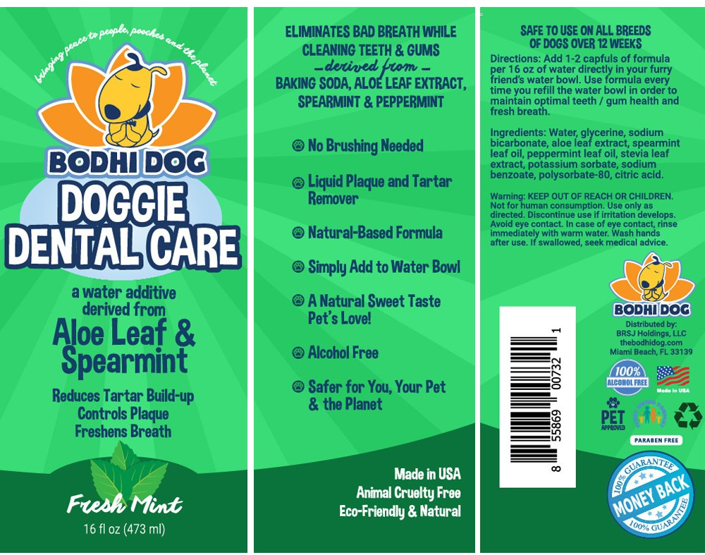 Natural Pet Dental Water Additive for Dogs Teeth, Breath, and Healthy Gums | Best for Tartar Cleaning, Plaque Remover & Fresh Drinking Oral Care Cleaner by Bodhi Dog (Image #5)