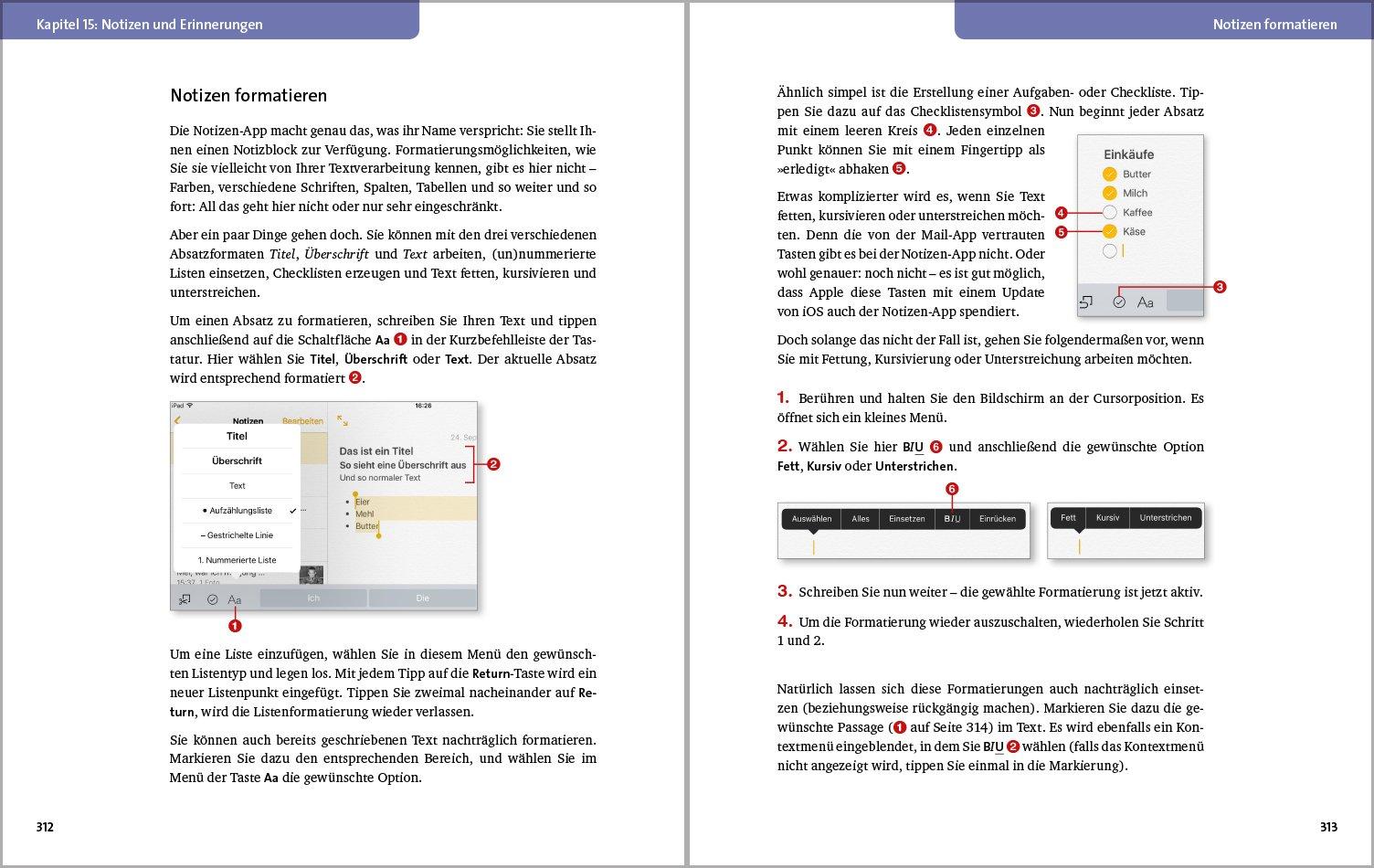 Das iPad-Buch: Die verständliche Anleitung: Amazon.de: Giesbert ...