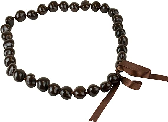 Money Kukui Nut Shell Lei $ Graduation Promotion Birthday Wedding Luau Hawaiian