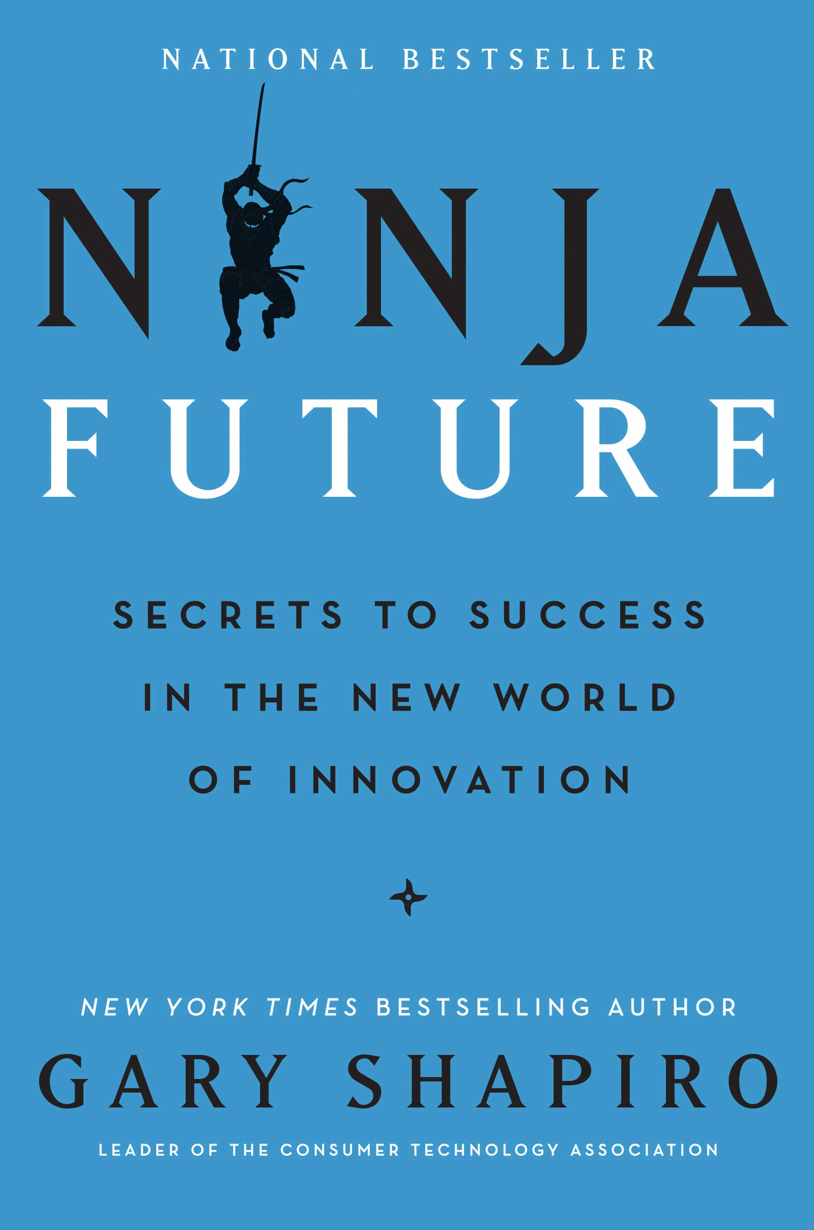 Ninja Future: Secrets to Success in the New World of Innovation