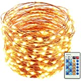 LUCKLED 66ft 200 LED Christmas Starry String Lights Dimmable with Remote, Waterproof Decorative Copper Wire Lights Lighting for Home, Garden, Bedroom, Patio, Wedding and Party Decorations (Warm White)