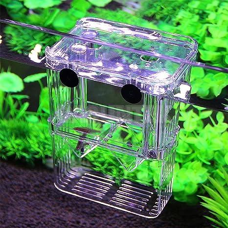 Buy ELECTROPRIME® Clear Fish Hatchery Box Floating Aquarium