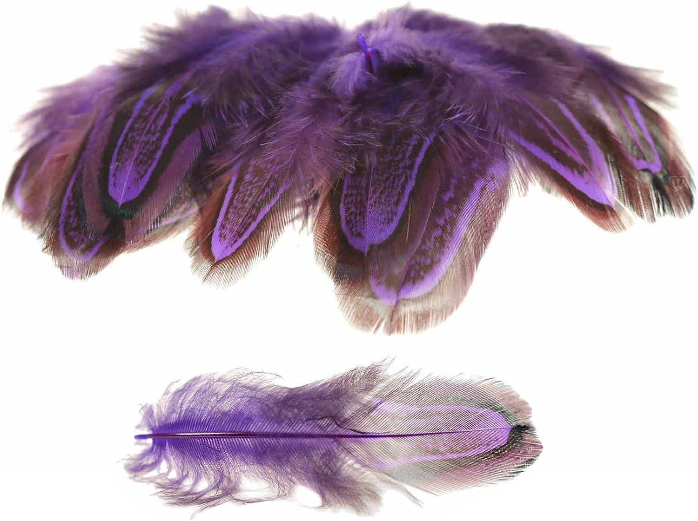 z.B Federkost/üm ca 4~8x1~2cm gef/ärbt Farbwahl maDDma 50 H/ühnerfedern f Farbe:lila