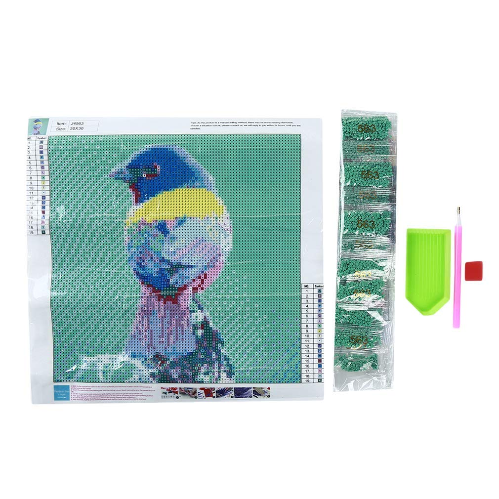 Yevison Bird Embroidery Painting 5D DIY Diamond Painting Kits Arts Craft Home Art Decoration Durable and Useful