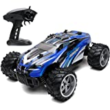 Remote Control Car 1:16 Scale Offroad Radio RC Car with Speed of 20km/h 2.4Ghz 4WD for Kid Great Gift(COLOR AT RANDOM: Blue, Red )