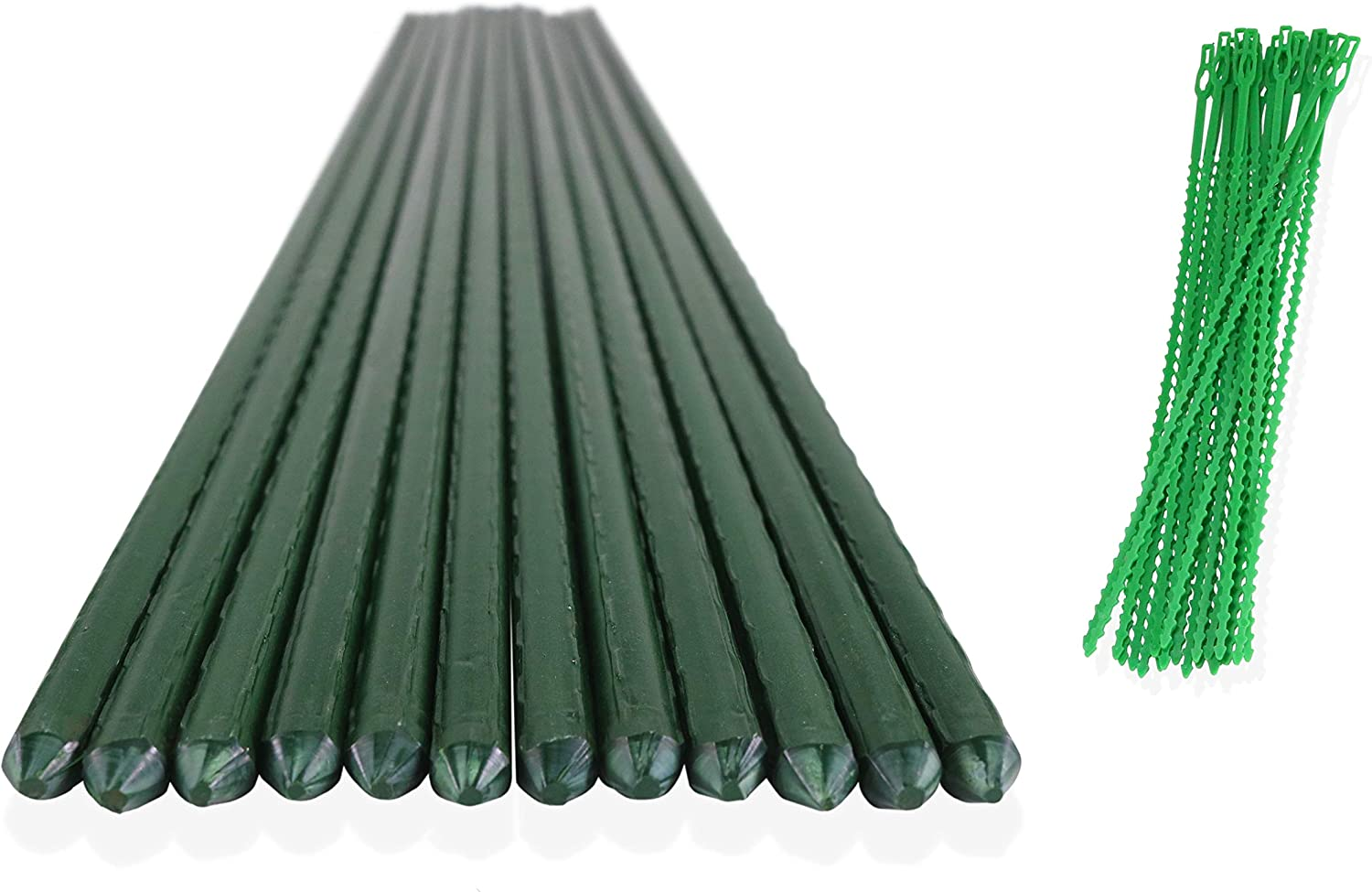 ClausHavn - Pack of 12 Green Plastic Coated Metal Garden Tomato Stakes Cane Sticks for Plant Support, 3ft Long x 0.43in Diameter, Comes with 20 Reusable Plastic Plant Ties