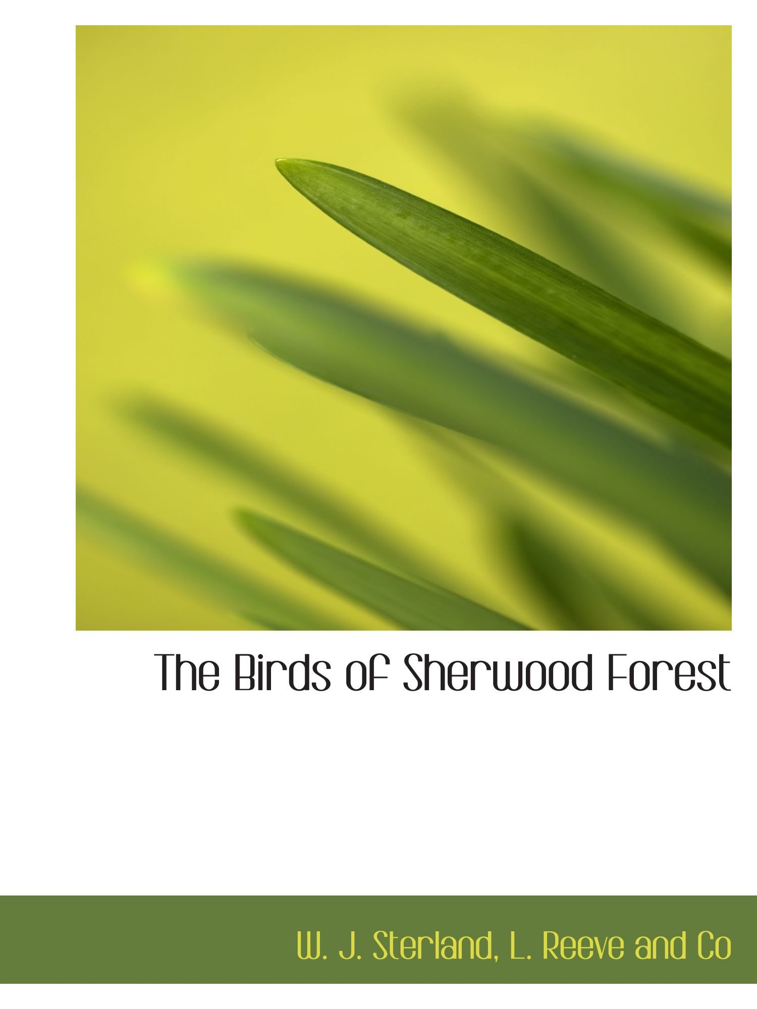 The Birds of Sherwood Forest PDF