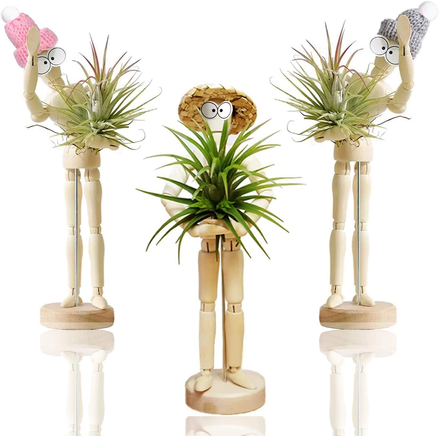Air Pineapple Soilless Plants Indoor Bracket Desktop Purification Potted Pla YAN