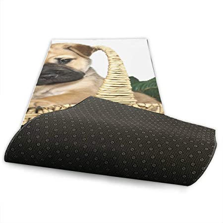 Amazon.com : XDCGG Artmatic Yoga Mat Sweet Shar Pei Puppy ...