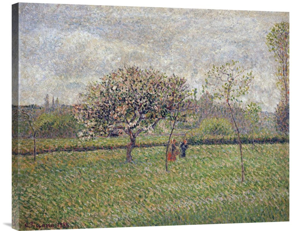Global Galerie Budget gcs-265359–76,2–360,7 cm Camille Pissarro Apple Tree Blossom at Eragny Gallery Wrap Giclée-Kunstdruck auf Leinwand Art Wand B01K1PUQ7A |