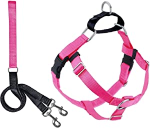 2 Hounds Design Freedom No Pull Dog Harness   Adjustable Gentle Comfortable Control for Easy Dog Walking  for Small Medium and Large Dogs   Made in USA   Leash Included   1