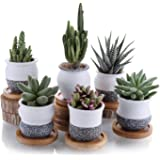 T4U 2 Inch Ceramic Small Succulent Plant Pot, Mini Cactus Planter Pot, Flower Pot Container with Bamboo Trays Korean…