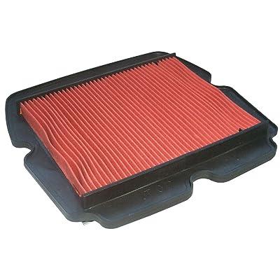 Hiflofiltro HFA1921 Premium OE Replacement Air Filter: Automotive