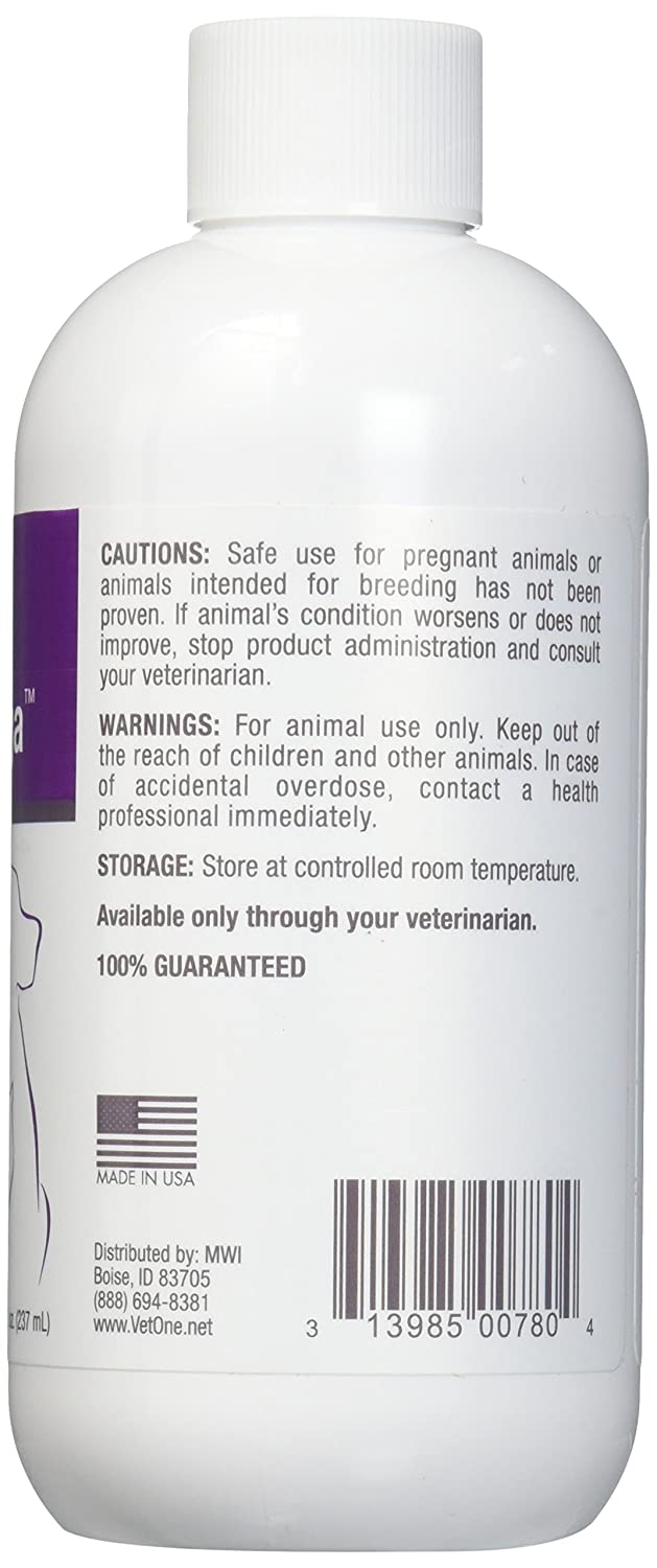 Amazon.com : Vet One O3 Omega Liquid EPA & DHA for Dogs & Cats - Skin & Coat Supplement - Supports Immune System & Joint Health - 8 oz : Pet Supplies
