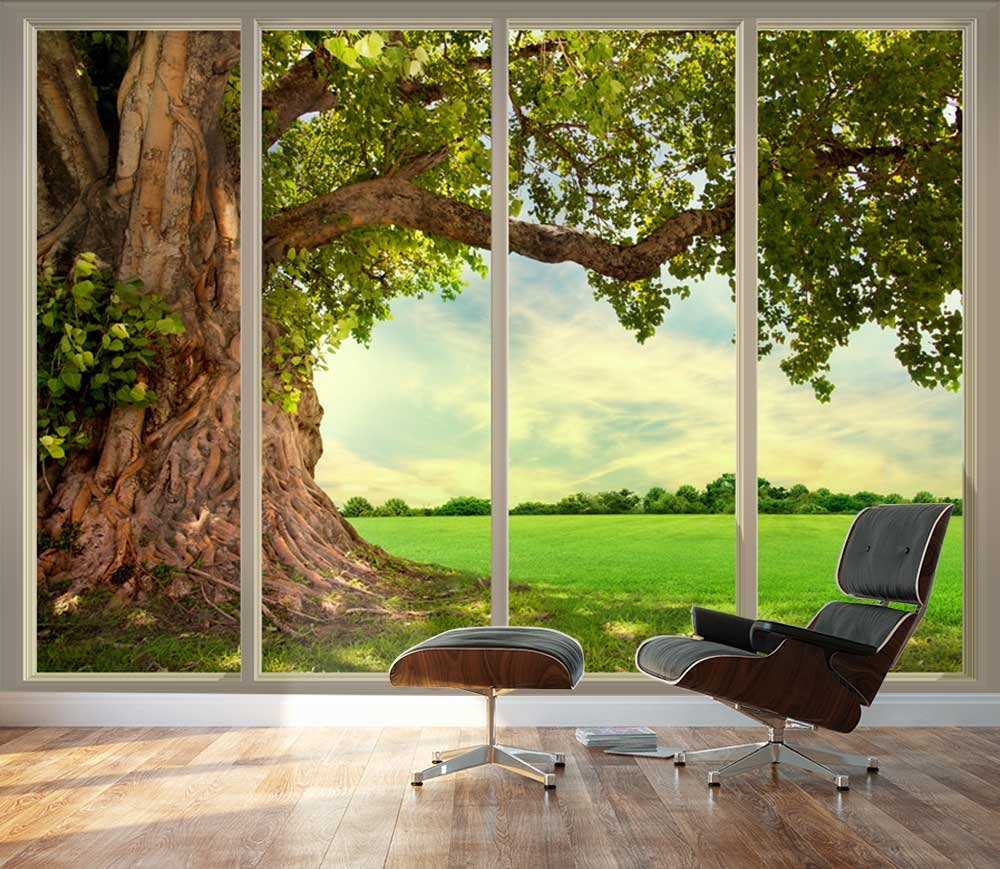 Large wall mural old tree and meadow seen through sliding for Full wall sliding glass doors