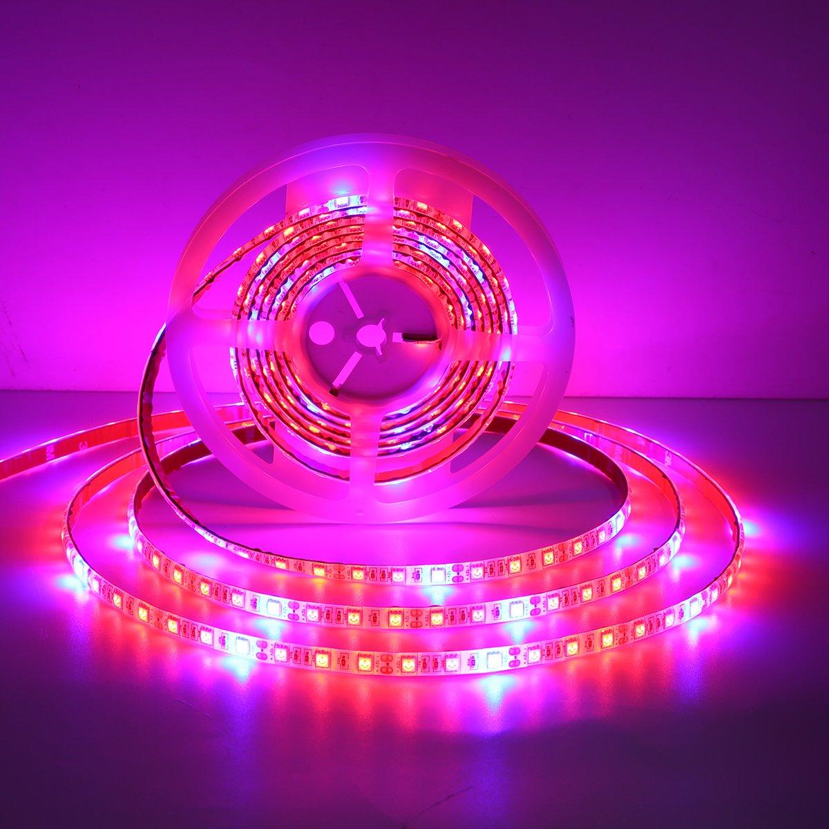 5M SMD5050 Waterproof Full Spectrum LED Plant Grow Strip Light for Greenhouse Aquarium DC12V - (Plug: US Plug)