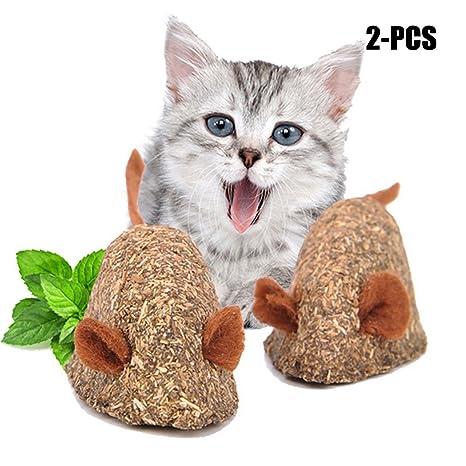 Juguete Catnip Gato, Legendog 2PCS Gato DenticióN Juguete Interactivo En Forma De RatóN Gato Masticar