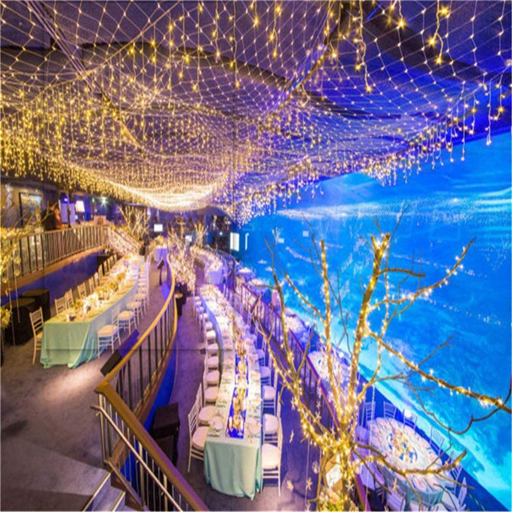 BABIFIS Luz Net, Impermeable Al Aire Libre Estrellada De Cuerdas De Vacaciones Decoración De La Boda Los Árboles Colgantes Al Aire Libre Disposición Regalos 3 * 2M 8*10m