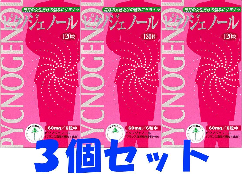 【3個セット】ピクノジェノール 120粒 B00ZWW61I6