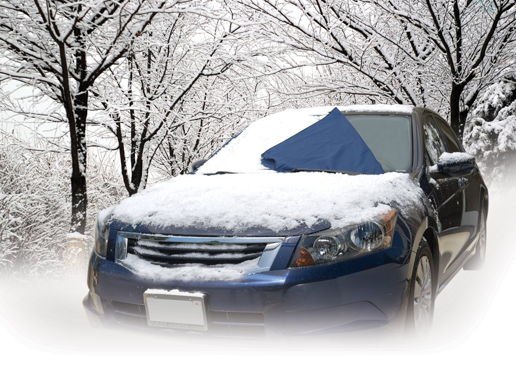 Amazoncom Auto Expressions Winter Warrior Windshield - 17 cars turned into art thanks to frosty winter weather