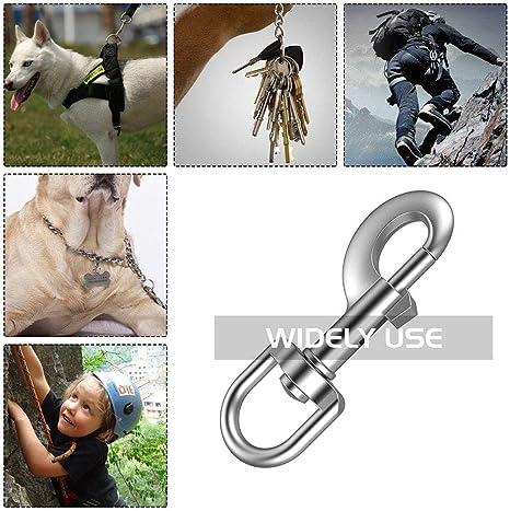 2 x mosquetón mosquetones 3 x anillo aproximadamente para set correa perros correa perros vajilla