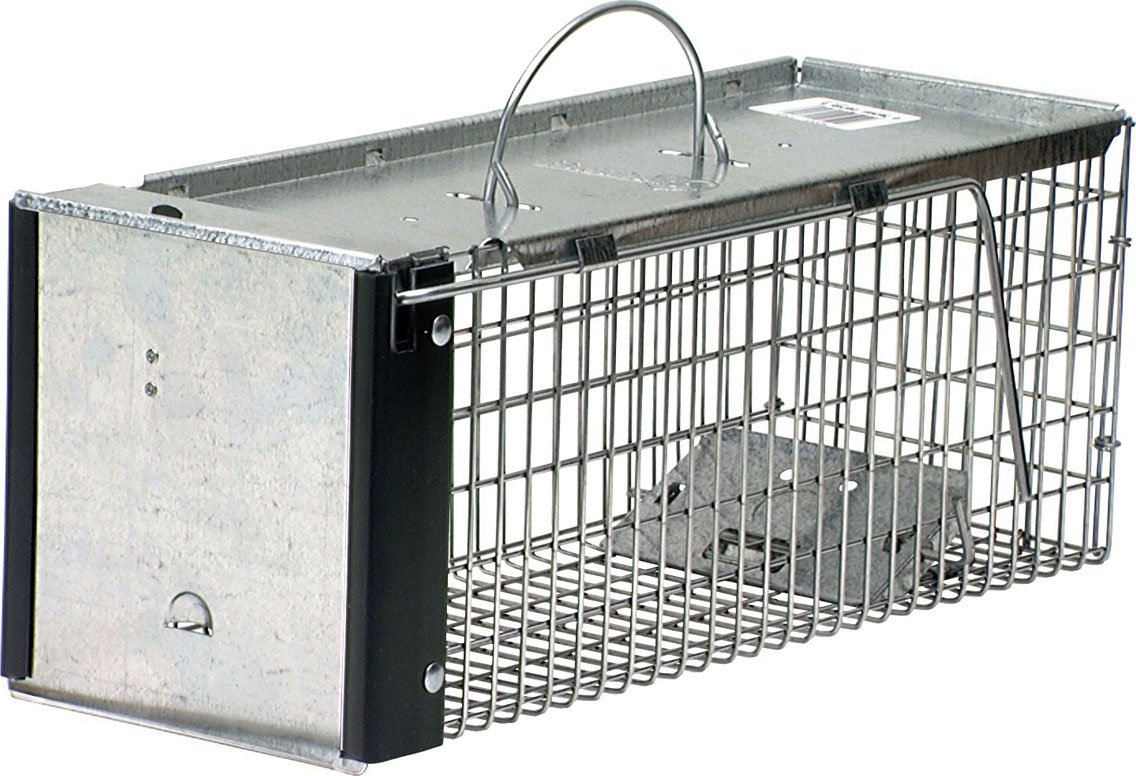 Havahart 0745 X-Small Professional Style One-Door Animal Trap for Chipmunks, Squirrels, Rats, and Weasels product image