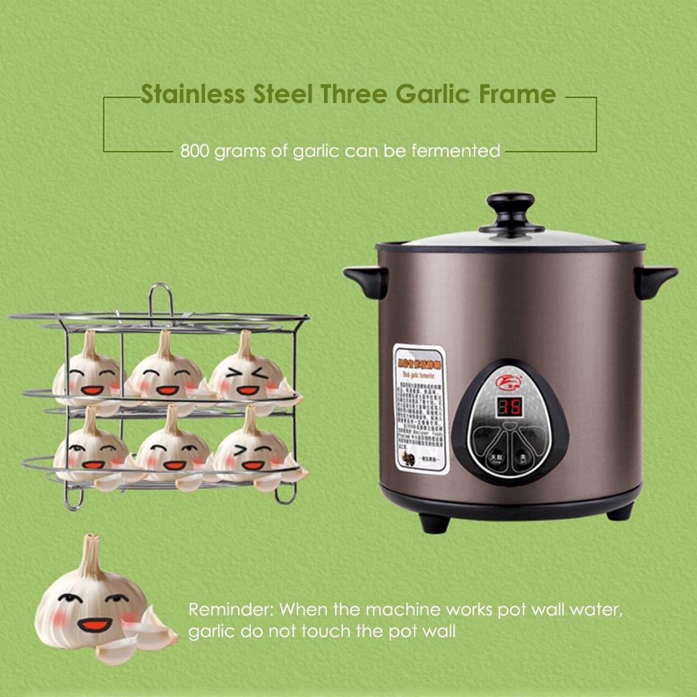 HUKOER Black Garlic Fermenter Full Automatic Intelligent Control, Single Colve Garlic Mutiple Clove Garlic DIY for home 110V by HUKOER (Image #7)