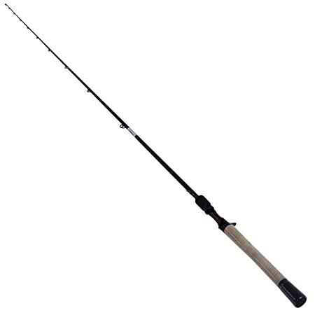 Daiwa FG731MHFB Fuego Series 10-20 lb Test Rod