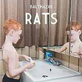 Rats -Digi-