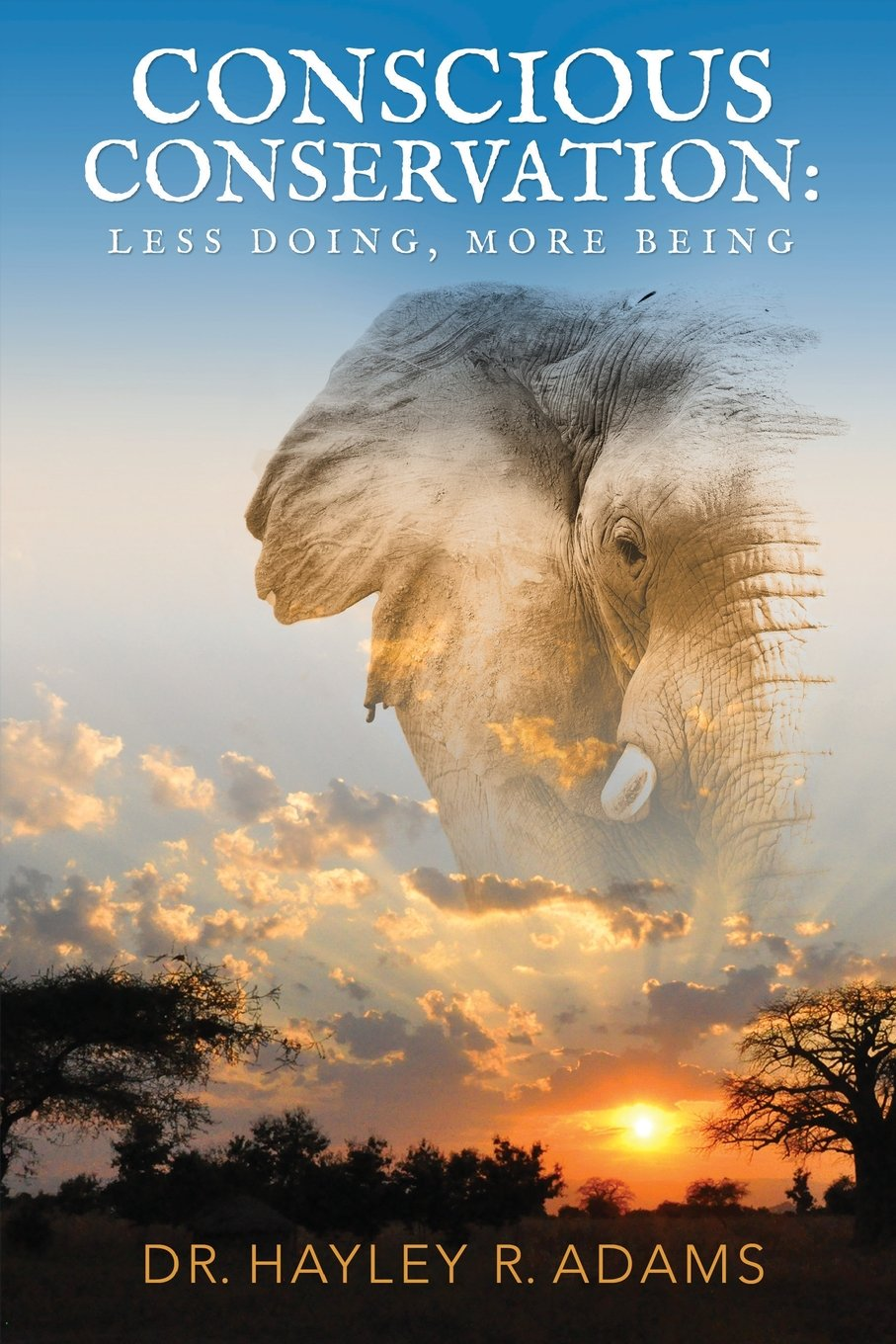 Conscious conservation less doing more being dr hayley r adams conscious conservation less doing more being dr hayley r adams 9781977706638 amazon books fandeluxe Image collections