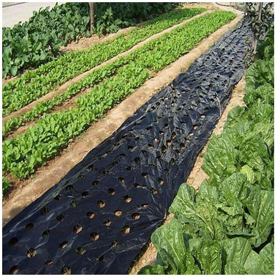 GAI 5~50m 5Holes Negro Plástico El Acolchado De La Película, Las Plantas Vegetales Agrícolas Grow Cine, Invernadero Mantener Caliente La Cubierta Vegetal Perforada