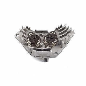 Hellux 6441.78,698032 - Resistencia para calentador de coche: Amazon.es: Coche y moto