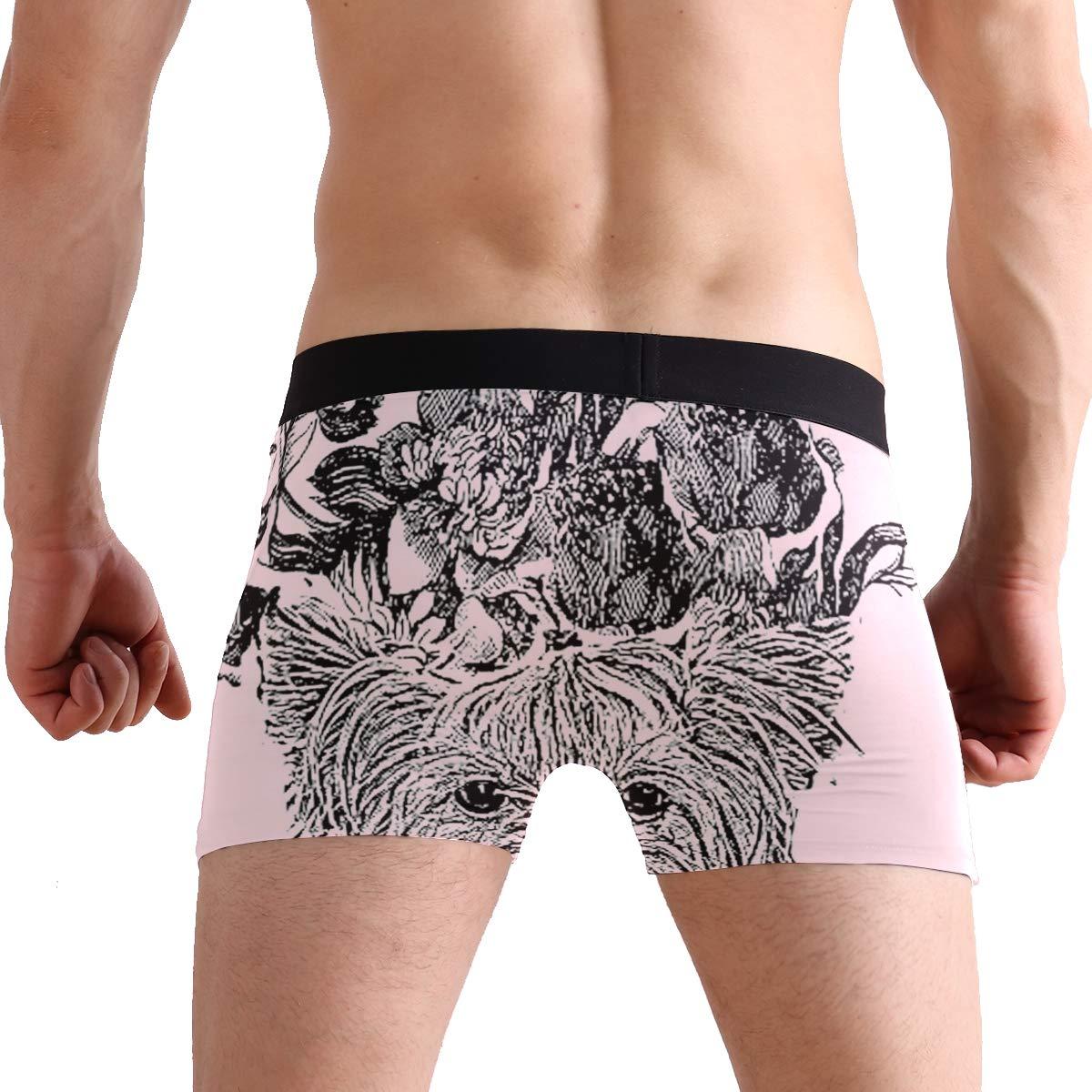 CATSDER Adorable Yorkie Boxer Briefs Mens Underwear Pack Seamless Comfort Soft