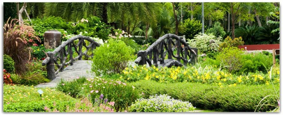 Cristal imágenes Real Jardín Botánico Puente – cuadro de 125 x 50 cm Float: Amazon.es: Hogar