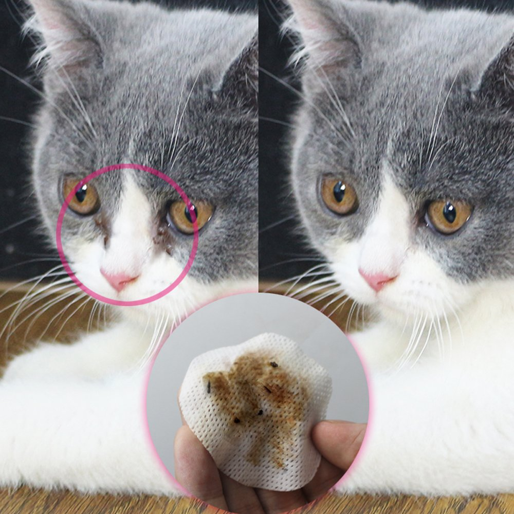 Eye Tear Stain Remover for Cats & Dogs -100 Pre Soaked Cotton Pads - Best Natural Eye Crust Treatment for White Fur - No Chemical and Bleach Free-Eye Clear Sterile Eye Wash by Mwellewm (Image #3)