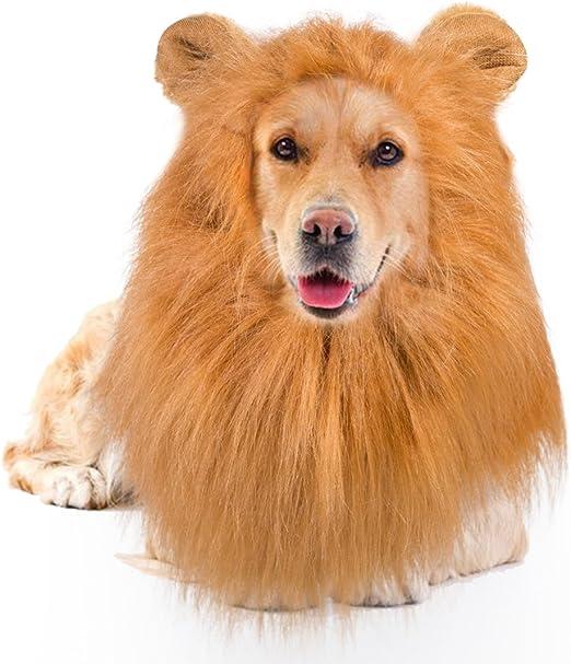 sumuya Peluca para Disfraz de Melena de león para Perro, Gato, Halloween, Navidad, Festival, Disfraz, con Orejas, Color marrón: Amazon.es: Productos para mascotas